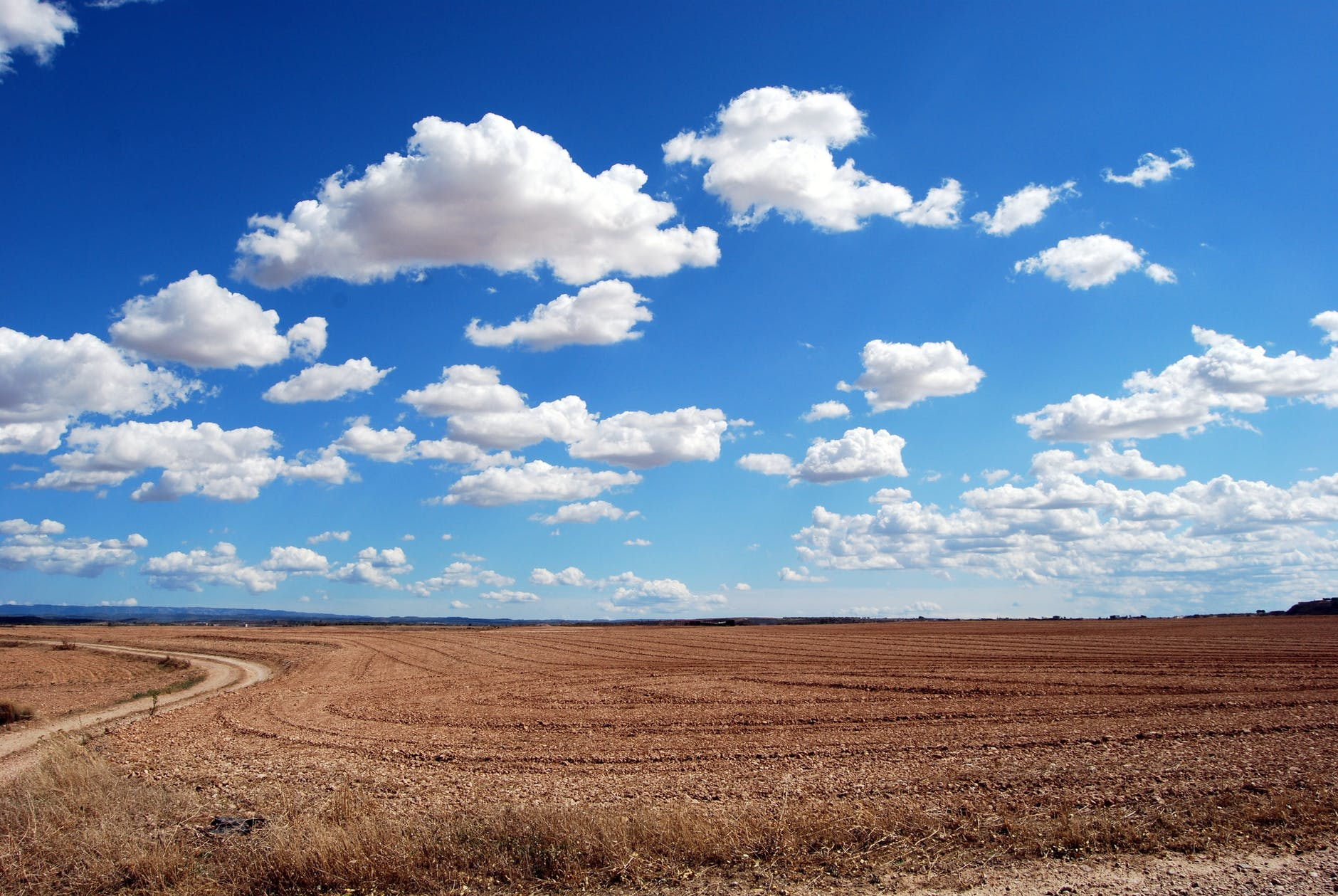 brown field and blue sky